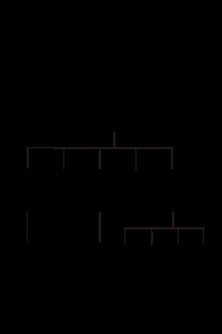 山名略系図